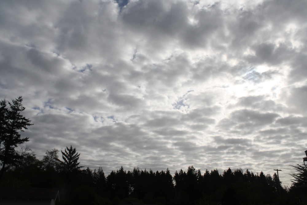 Today_skies_009